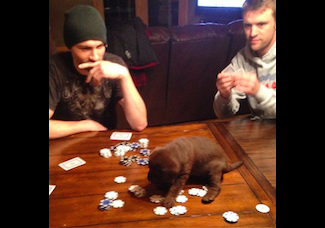 Jeremiah James Korfe playing poker